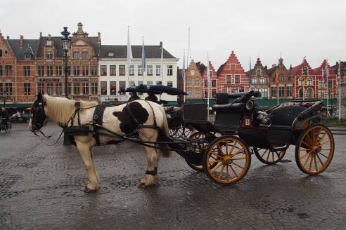 Horse & cart or bike are the main transporation in Bruges.. not together.. that's just crazy...